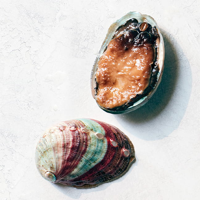 Abalone shell and live abalone