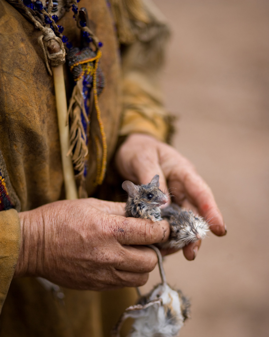 <em>mouse in hand</em><br/>