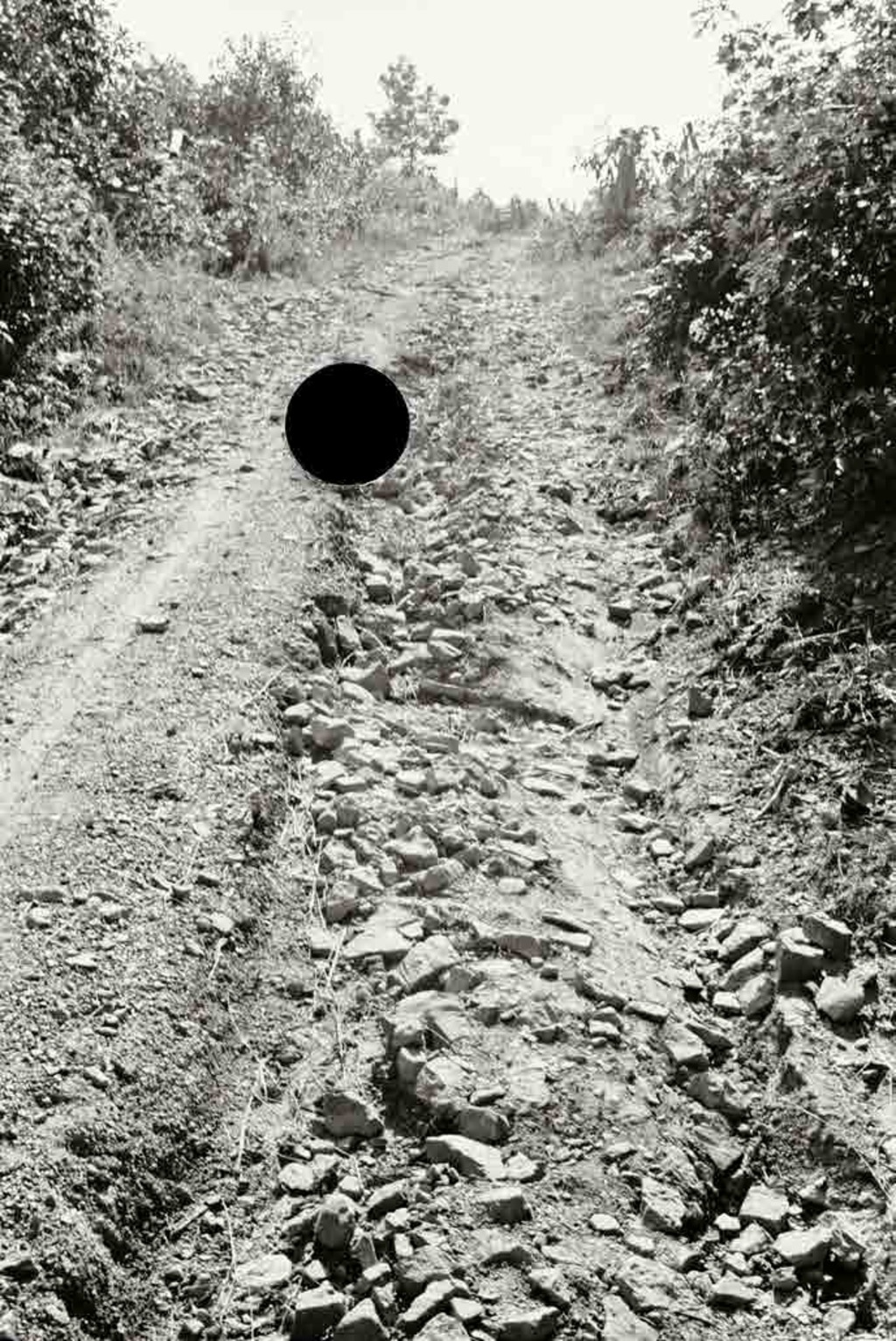 Bad road, Garrett County, Maryland. 1935. Theodor Jung.