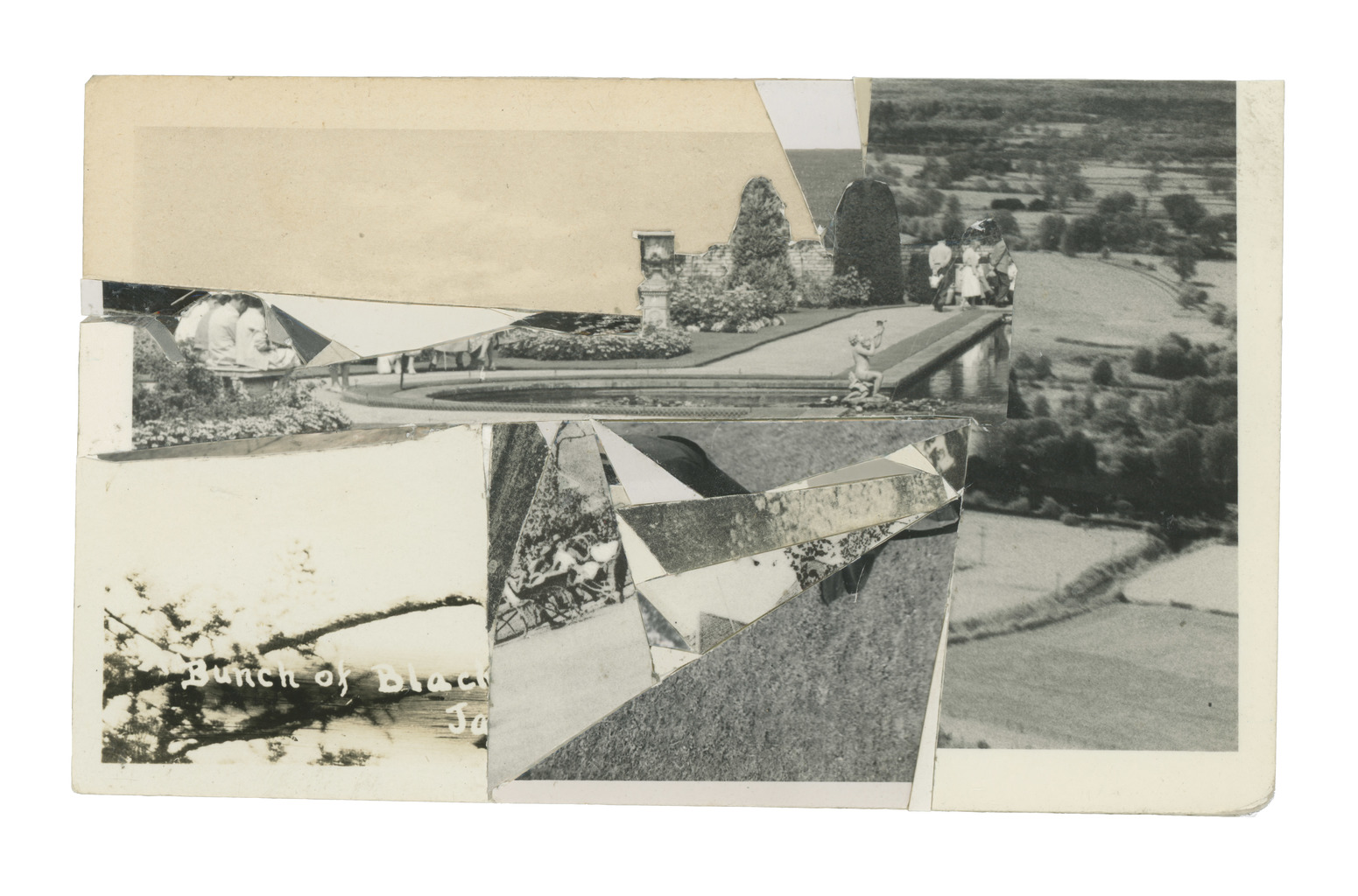 Fields And Branch, 2011, Collage, 8 x 13.2 cm.