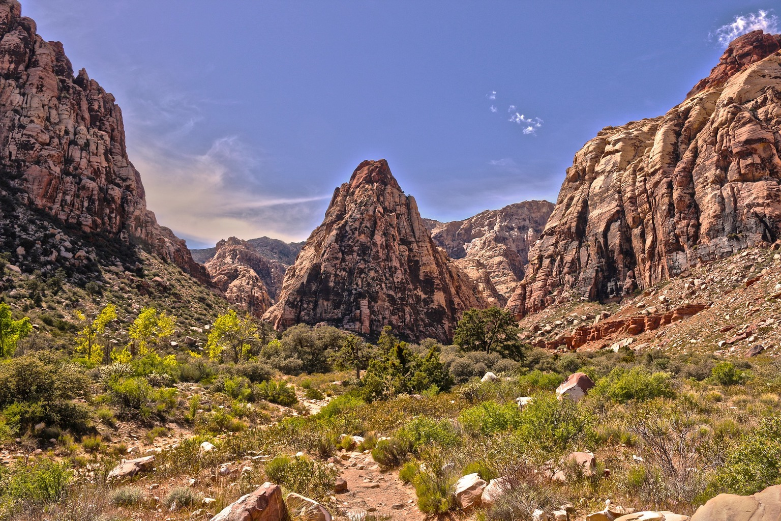 Head out to Red Rock Canyon for some stunning views.